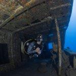 Katharina Dohmann in Ocean Ramsey Whale Shark Top, Girls that Scuba,