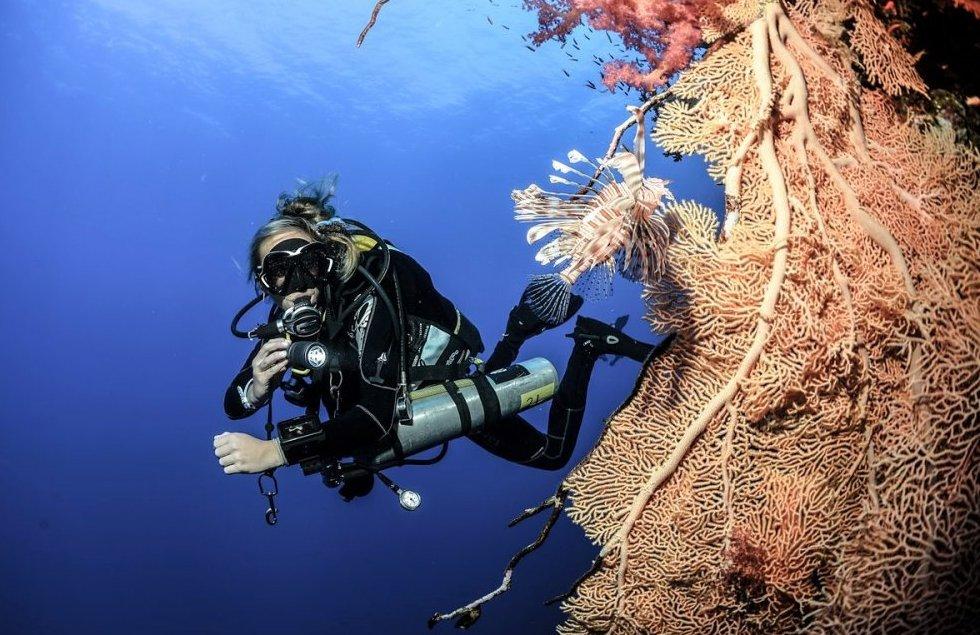 Tec Diving in Mauritius